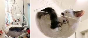 Panier Pour Chat Original : panier pour chat design et original une bulle suspendue dim dim bubble ~ Teatrodelosmanantiales.com Idées de Décoration