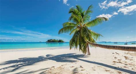 Vereinfachte Einreise nach Jamaika   Reise vor9