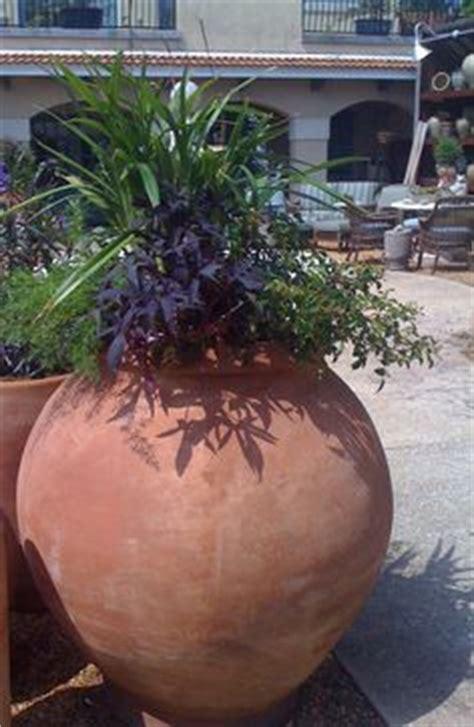 olive garden pensacola terracotta olive oils and olives on