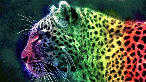 Rainbow Animal Wallpaper - rainbow cheetah wallpaper wallpapersafari