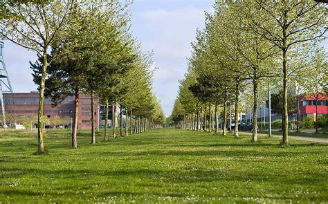 Garten Landschaftsbau Stadt Essen by Begr 220 Nung