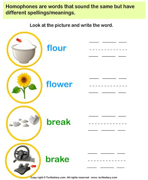 writing homophones worksheet turtle diary