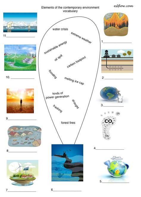 contemporary environment vocabulary  english language