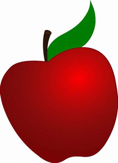 Apple Meaning Word Symbol Symbolism Dream