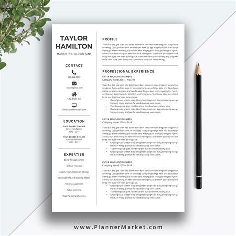 Resume Designs In Word by Resume Template Professional Cv Template Creative Resume