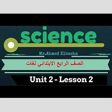 ساينس لغات Unit 2  Lesson 2  Part 1  The Movement Of The Sun And The Earth  Grade 4 Youtube