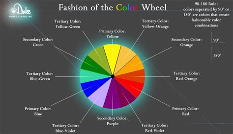 fashion color wheel colors   separated