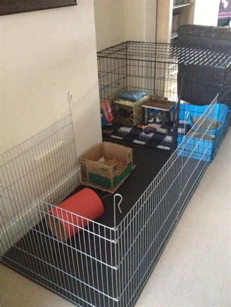 pendog crate rabbit housing room decoration bunny