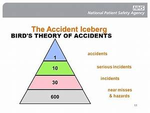 bird's theory of accidents - YouTube