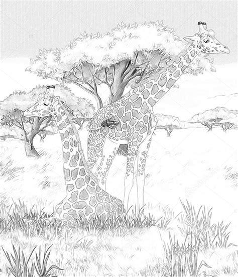 Kleurplaat Maken Illustrator by Safari Giraffen Kleurplaten Pagina Afbeelding Voor