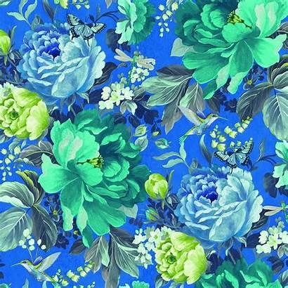 Floral Shade China Dianthus Wilder Ilovewallpaper