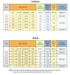 skeletal muscle chart muscle mass chart bmi bone mass  skeletal muscle muscle mass