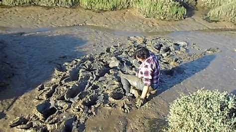 Le Dive - mud dive