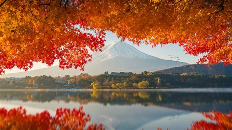 photography japan mount fuji wallpapers hd desktop