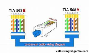 Ethernet Cable Color Code Enticing Appearance Cat Wiring