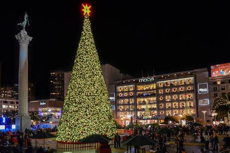 san francisco christmas trees  holiday lights