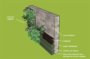 Mur Végétal Anti Bruit : tout savoir sur le mur v g tal anti bruit ~ Premium-room.com Idées de Décoration