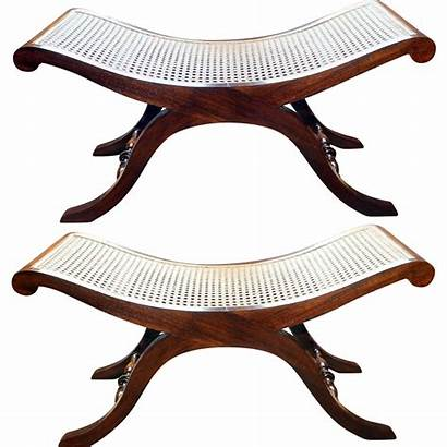 Benches Cane Solid Wood Cushions Rubylane Outstanding