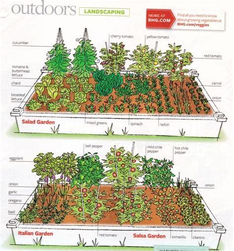 gardening layouts images  pinterest vegetable