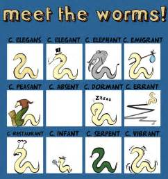 Science Cartoon Worm