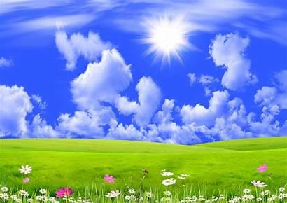 Background Desktop Nature Spring Widescreen Meadow