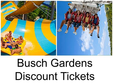 busch gardens tickets how much is busch garden tickets bestsciaticatreatments