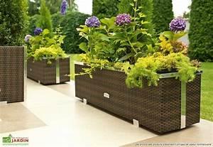 Jardinière Rectangulaire Pas Cher : jardiniere bois pas cher ~ Preciouscoupons.com Idées de Décoration