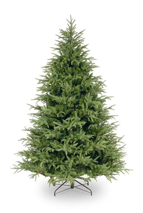 6ft frasier grande fir feel real memory shape artificial tree garden world