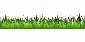 Meadow green grass clipart isolated stock photo by nobacks ...