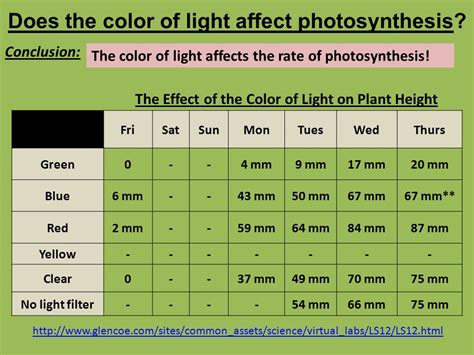 does the color of light affect plant growth do now 101 plant and animal cells are different which