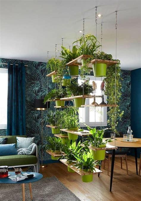 indoor garden ideas  newbie gardeners  small
