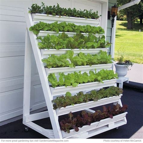 Can You Grow In A Vertical Garden by Grow Greens In This Diy Vertical Garden Garden