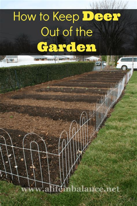 how to keep deer out of vegetable garden custom deer fence garden enclosure with pergola the great