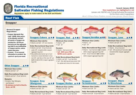 fishing florida seasons gulf regulations coast coastal angler saltwater fish reg
