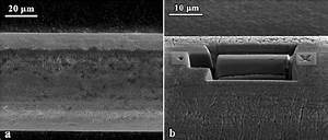 A  Sem Image Of The Wire Taken In A Dual