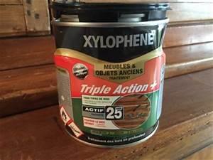 Produit Contre Les Guepes : xyloph ne produit contre les termites ~ Dailycaller-alerts.com Idées de Décoration