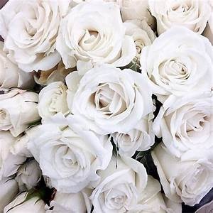 white rose bouquet | Tumblr