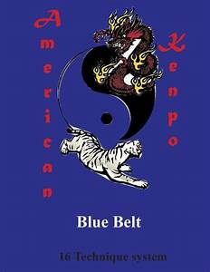 American Kenpo Blue Belt  16 Technique System  This Manual