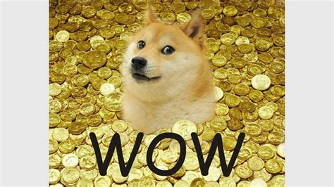 Doge Coin Memes - What Is Doge Internet The Guardian / I ...