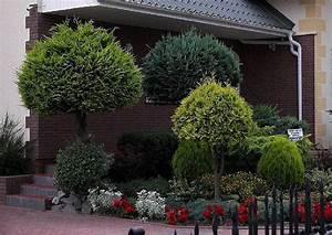 gartengestaltung koniferen formschnitte thuja haus With französischer balkon mit thuja garten
