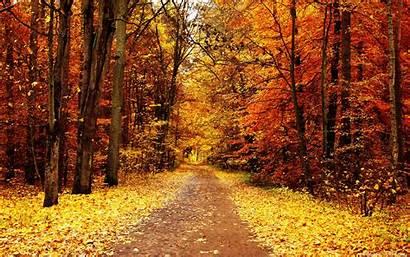 Fall Desktop Themed Autumn Wallpapertag Pc