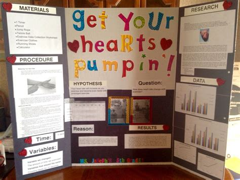 5th Grade Class Science Fair Project Checking Your Heart