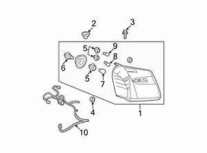 Chevrolet Equinox Headlight Wiring Harness  W  O Fog Lamps