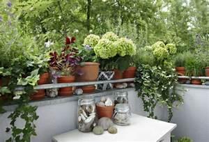 Balkonpflanzen Herbst Winter : balkon garten im herbst und winter forum glamour ~ Sanjose-hotels-ca.com Haus und Dekorationen