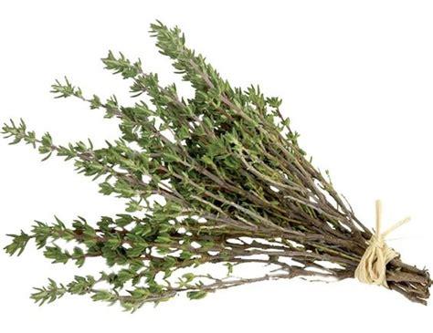 sarriette cuisine thym sec 30 g pomona livré par toupargel fr