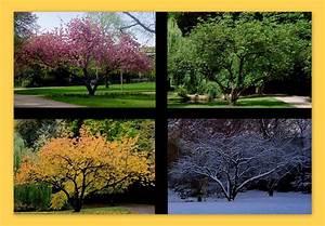 Bettdecke 200x220 4 Jahreszeiten : die 4 jahreszeiten foto bild jahreszeiten flora d sseldorf bilder auf fotocommunity ~ Indierocktalk.com Haus und Dekorationen