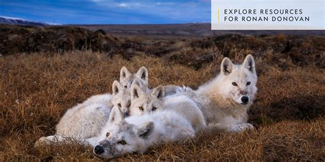 National Geographic Extinct Animals