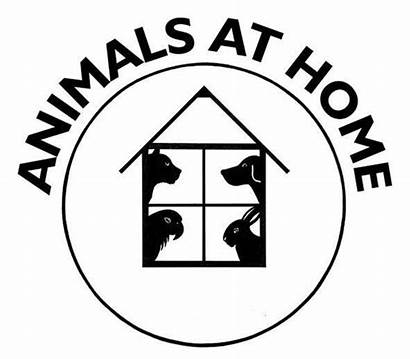 Animals Swindon Ltd North West Merseyside Lancashire