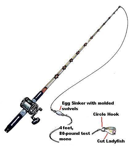 fishing rigs grouper bottom gulf florida rods pros coast spooled reels fiberglass blanks penn mono myself doing ve re been