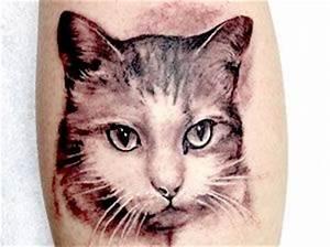Tatuaggi, tattoo di gatti Esempi e consigli